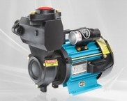 Peripheral Self Priming Pumps