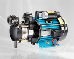 Peripheral Self Priming Pumps | Nestor